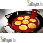 Szilikon tojás és palacsinta-sütőforma KP – 1/7 – AFG